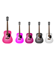 Set of Beautiful Acoustic Guitars vector image vector image