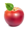 Red apple with green leaf vector image vector image