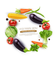 Background with vegetables in a circle vector