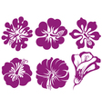 Hibiscus silhouettes set vector image