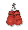 Hanging boxing gloves vector image
