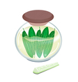 Pikled Marrow in A Jar on White Background vector image