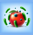 apple with bacteria vector image