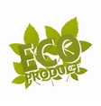 Green leaf with eco label logo vector image