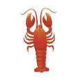 lobster animal sea vector image