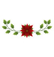 christmas flower poinsettia evergreen foliage vector image