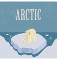 Arctic North Pole Retro styled image vector image