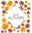 autumn banner set vector image