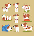 funny puppy daily routine set cute little dog in vector image