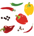 different peppers on a white background vector image