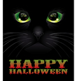 Halloween background with black cat vector image vector image