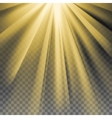 Yellow sun rays flare vector image