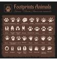 Animal Tracks - North American animals vector image