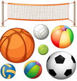 Set of different balls and net vector image vector image