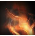 Abstract fire flames vector image