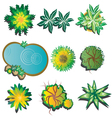 plants top view set 1 vector image