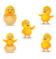 happy chicks cartoon collection vector image