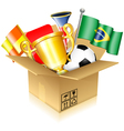 Soccer Items vector image