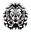 Lion Head Graphic vector image vector image