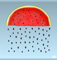 watermelon rain vector image