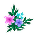 abstract floral compostion arrangment isolated on vector image