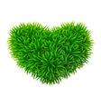 Grassy heart vector image