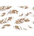 Seamless pattern with beige feathers on a white vector image