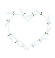 White Sage Flowers in A Heart Shape vector image vector image