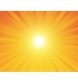 sun on yellow background vector image