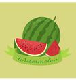 Watermelon Fruit Banner Green vector image