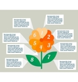 Flower infographics vector image