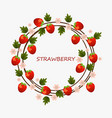 strawberry round summer fruits card vector image