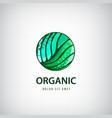 eco organic healthy natural food logo vector image