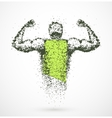 Muscular man vector image