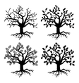 Park old trees tree silhouettes with roots vector image