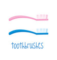 toothbrushes on white background vector image