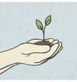 hands with plant vector image