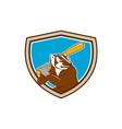 Badger Baseball Player Batting Shield Cartoon vector image
