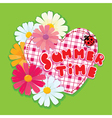 Checkered Heart ladybird and daisies on a green b vector image vector image