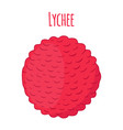 Pink lychee tropical exotic fruit lichee vector image