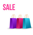 Sale paper bag isolated on white vector image