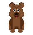isolated cute bear vector image