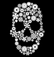 Flower skull vector image