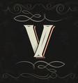 retro style western letter design letter v vector image