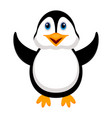 isolated cute penguin vector image
