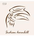 Indian hornbill vector image