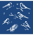 The collection of snow-covered birds vector image vector image