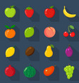 set of flat icons fresh natural fruits dark vector image