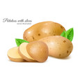 potatoes with slices vector image vector image