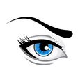 lady eye vector image